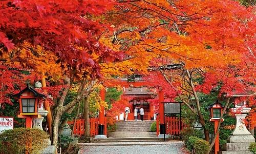 秋を彼と過ごしませんか?秋デートにぴったりな嵐山観光スポット紹介♡
