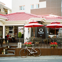 〈韓国〉お花屋さんが始めたお花畑カフェ。LOVIN' HERでうっとりした時間を