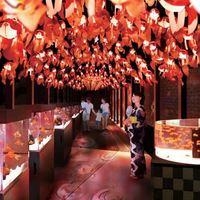 新しい夏を感じて。1000匹の金魚が幻想的な夏祭りを演出する「すみだ水族館」