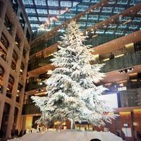 〔2014年〕絶対見たい!東京駅周辺のイルミネーション