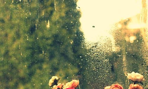 梅雨時のデートをもっと楽しく。雨の日でも大丈夫な東京のデートスポット♡