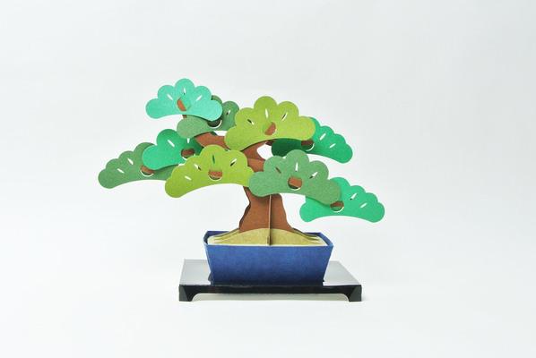 kami-bonsai 松